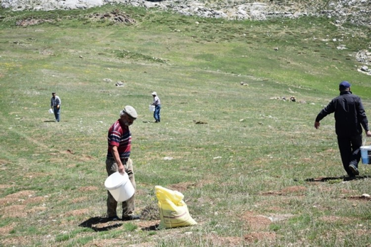 Antalya'da Mera Islah ve Amenajman Çalışmaları Aralıksız Devam Ediyor