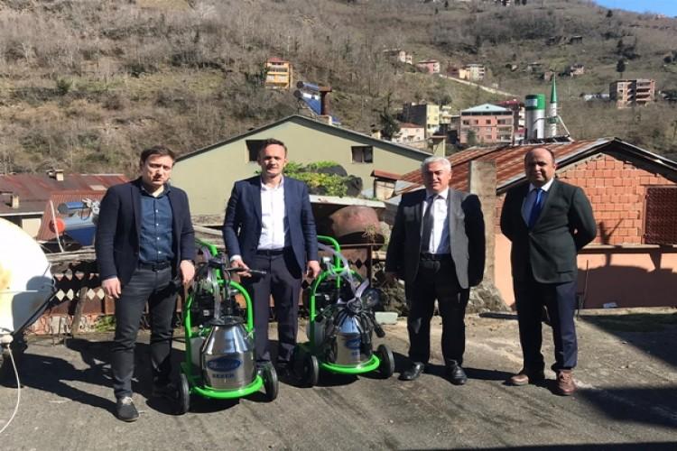 Giresun'da Manda Sütü Toplama Altyapısı Uygulanan Projelerle İyileştiriliyor