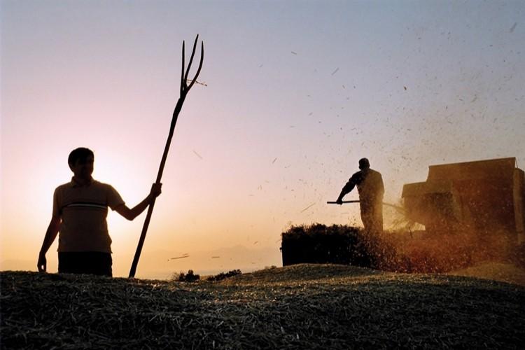 OECD tarım raporu: Üreticiye Fazla Destek Veriyorsunuz