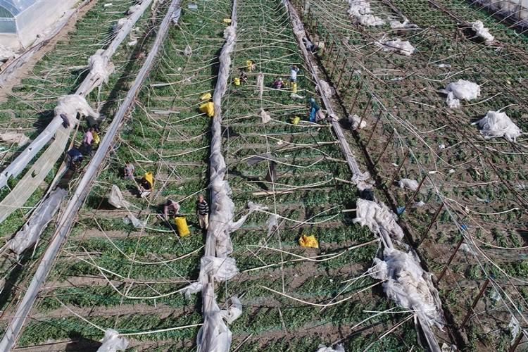 Bayraktar: Tarım Sigortaları Uygulamaları Gözden Geçirilmeli