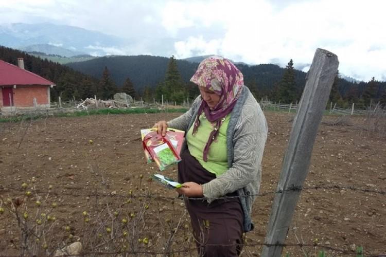 Giresun'da Yayla Sebzeciliğinin Geliştirilmesi İçin Sebze Tohumu Dağıtıldı