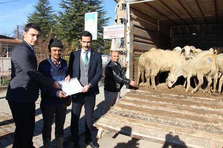 Başmakçı'lı Genç Çiftçiler Hayvanlarına Kavuştu