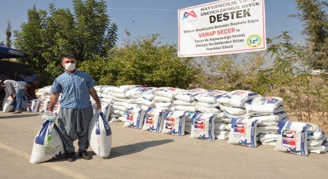 Süt üreticilerine ryegrass tohumu desteği