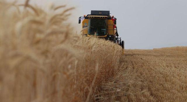Tarım ÜFE yıllık yüzde 18,70 arttı