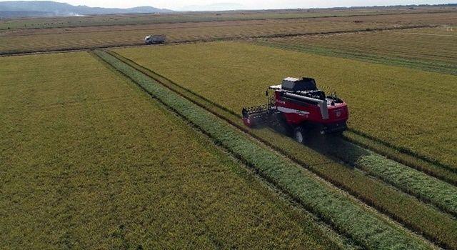 Tarımsal işletmelere 600 lira destek