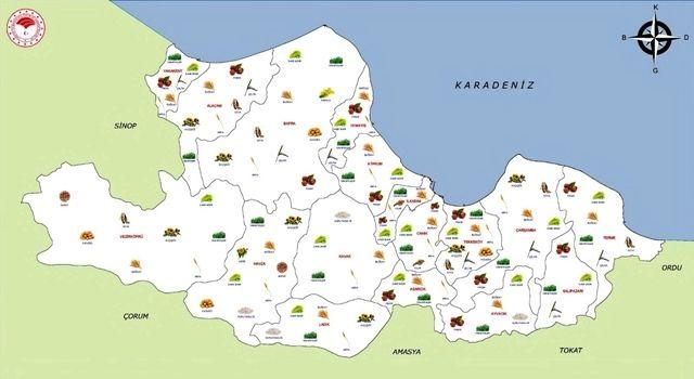 Samsun'da Desteklenecek Ürünler Belli Oldu