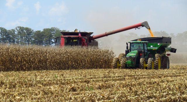 Tarımda üretici fiyatları yıllık yüzde 20.76 arttı