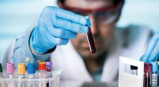 Moleküler Alerji Testi İle Alerjik Şok (Anafilaksi) Nedenleri Çok Ayrıntılı Ortaya Çıkarılabilir