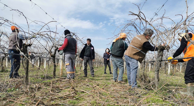 Tarımda 2021 Üretim Sezonu Saha Çalışmaları Başladı