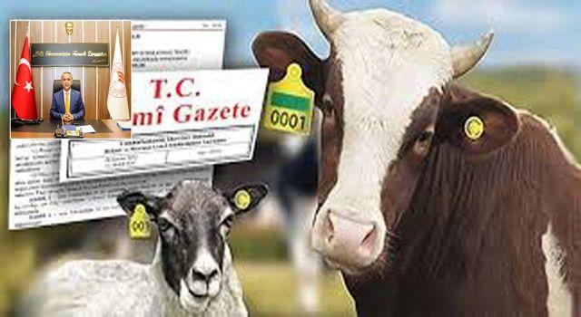 Hayvanlarını Kayıt Altına Aldırmayanlara Hayvan Başına Ceza Uygulaması