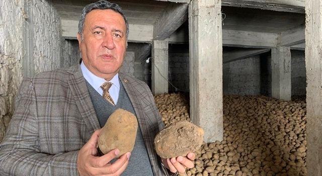 """Gürer: """"Patates üreticisinin uğradığı zarar karşılanmalı"""""""