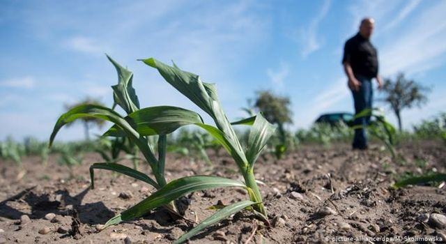 Tarım-ÜFE Yıllık Yüzde 22,06, Aylık Yüzde 2,52 Arttı