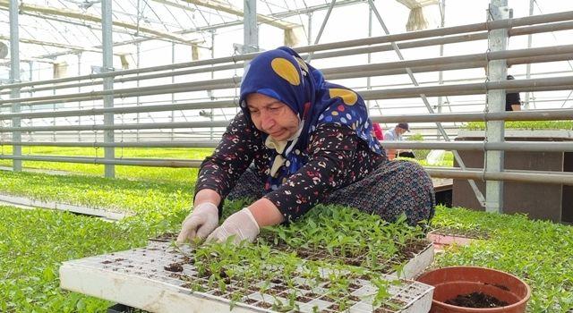 Bolu Belediyesi tarımsal faaliyetlere öncülük etmeye devam ediyor