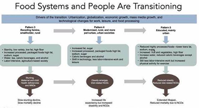 Gıda Sistemleri Konusunda Kapasite Geliştirme Eğitimleri