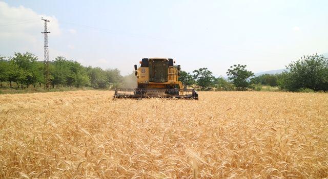 Tarımsal Girdi Fiyatları Yıllık Yüzde 21 Arttı