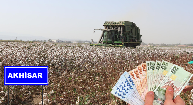 Akhisarlı Pamuk Üreticilerine 10 Milyon Lira Destek