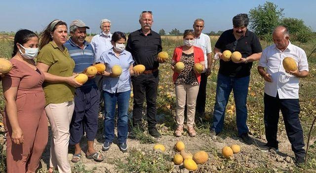 HDP'den kavun üreticisi çiftçilere ziyaret