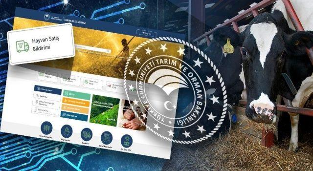 İl İçi Hayvan Satışları Dijital Ortamda Yapılabilecek