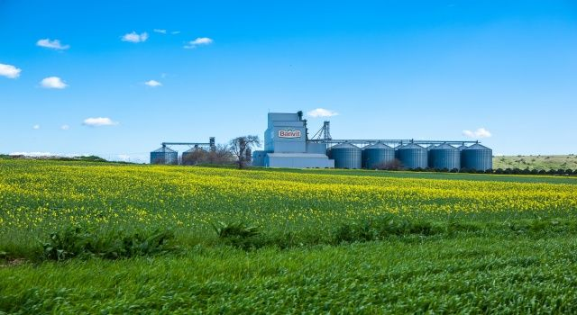 Banvit BRF, üretiminin yüzde 100'ünü tüketime sunuyor