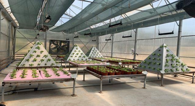 Teksan geleceğin tarımının enerjisini bugünden tasarladı