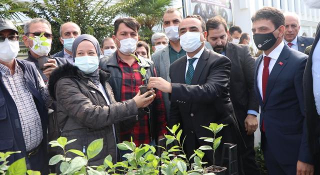 Çiftçilere 27 Bin Adet Aronya Fidanı Dağıtıldı