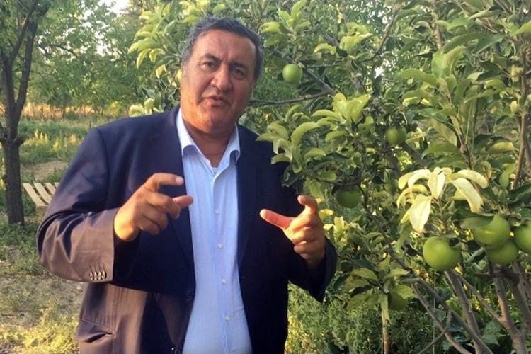 """Gürer: """"Sinek Küçük Ama Zararı Çok Büyük"""" Meyveciliği Bitirebilir!"""
