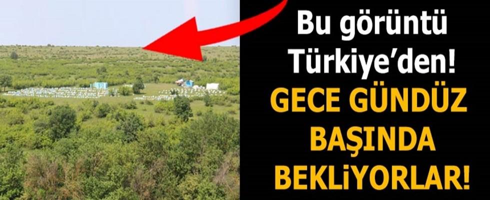 Son dakika: Gece gündüz başında bekliyorlar! Bu görüntü Türkiye'den