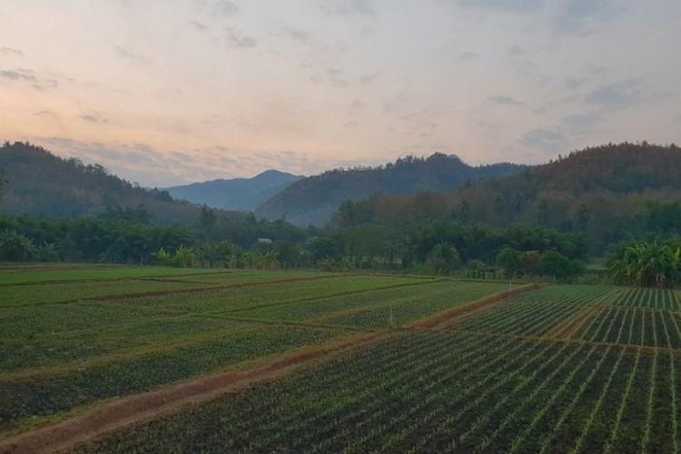 Çiftçi borçları için kanun teklifi