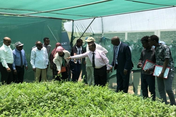 TİKA'dan Cibuti'ye Tarım Desteği