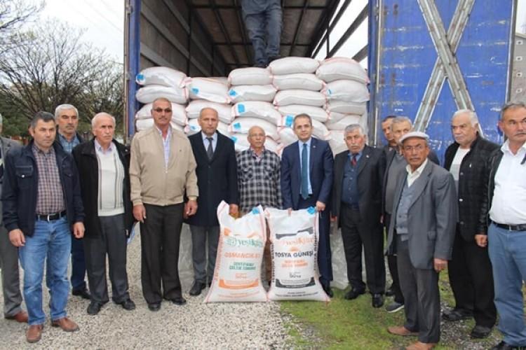 Tosya'da Üreticilere 24 Ton Çeltik Tohumu Dağıtıldı