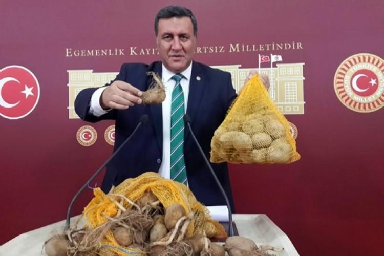Gürer: Patates Niğde'de hayvan yemi oldu, markette 2 lirayı aştı!