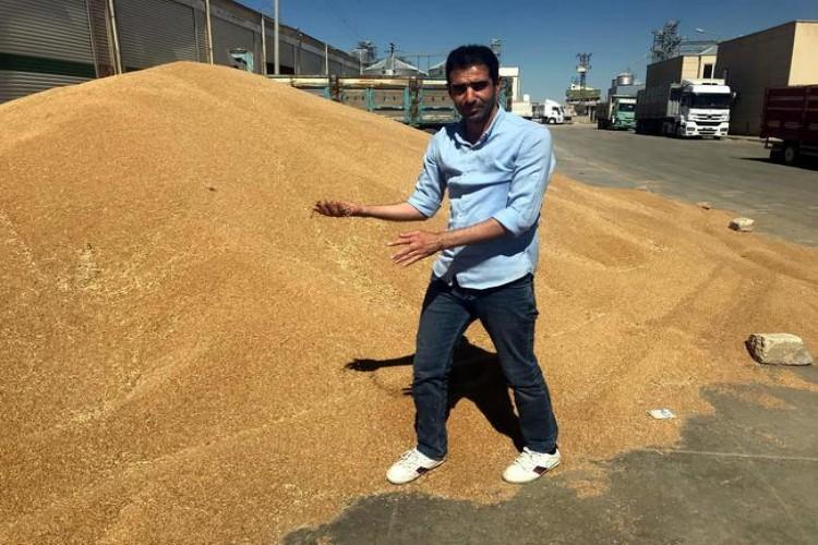 Buğday Üreticilerinden, 'TMO'nun Anlaştığı Firma Bizi Mağdur Ediyor' İddiası