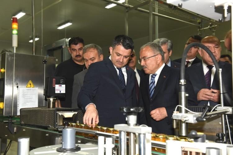 Türkiye Bal Üretiminde Dünyada En Büyük İkinci Üretici