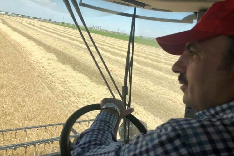 Başkan Altay Çiftçilerin Hasadına Eşlik Etti