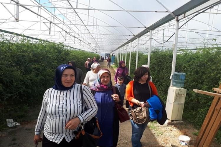 Kardeş İlçe Buluşmalarında Devrek'li Kadın ve Genç Çiftçiler Ağırlandı