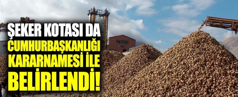 2018/2019 Şeker Kotaları Belirlendi