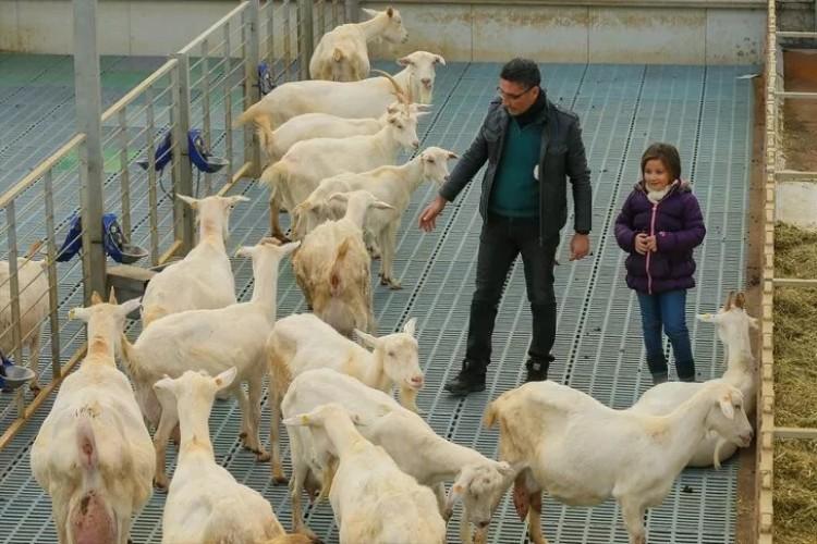 Kızı Süt İçsin Diye Kurdu! Açtığı Çiftlikle Zincir Marketlere Girdi