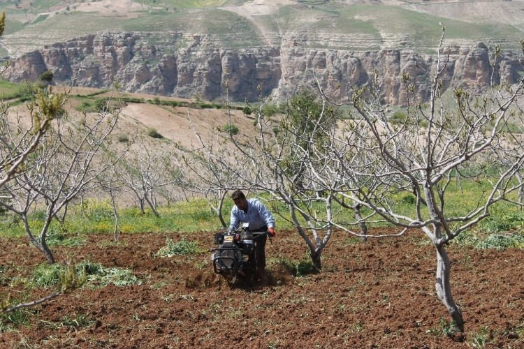 Aylık 6 Bin Liraya Çalıştıracak Tarım İşçisi Bulamıyorlar