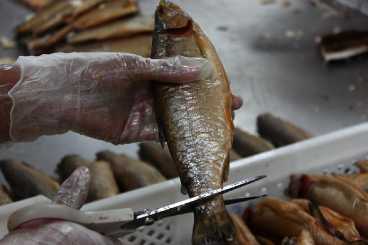 Su ürünleri ve hayvansal mamuller sektörlerinden Özbekistan atağı