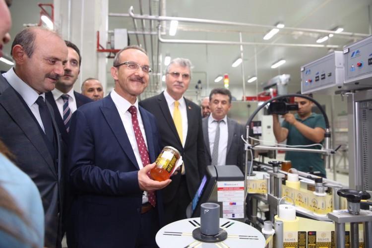 Dünya Arı Ürünleri İhracatında Türkiye'yi İlk Sıralara Taşıyacak Tesis Açıldı