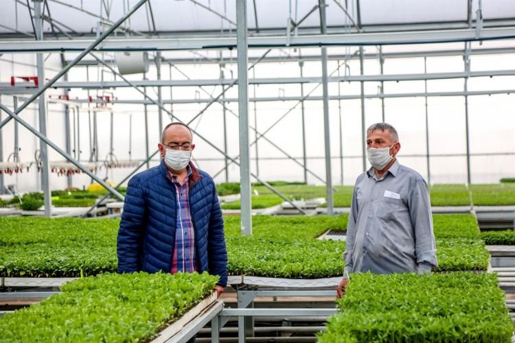 Meram Belediyesi'nden Üreticilere Uygun Fiyatlı Kaliteli Fide