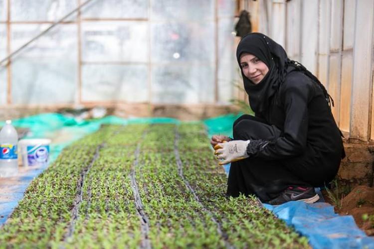 Tarıma Yatırım Suriye'nin Geleceği İçin Hayati Önemde
