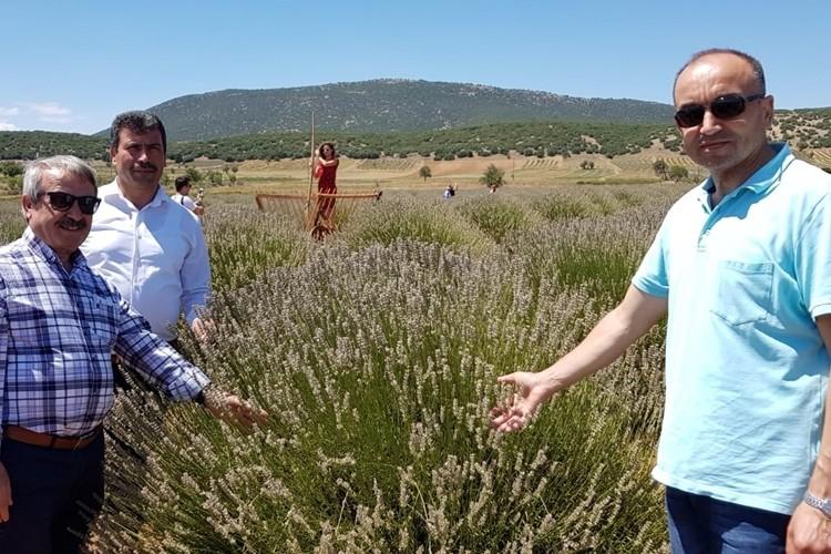 Uşak'ta Lavanta Üretimi İçin Kuyucak Köyüne Ziyaret Yapıldı