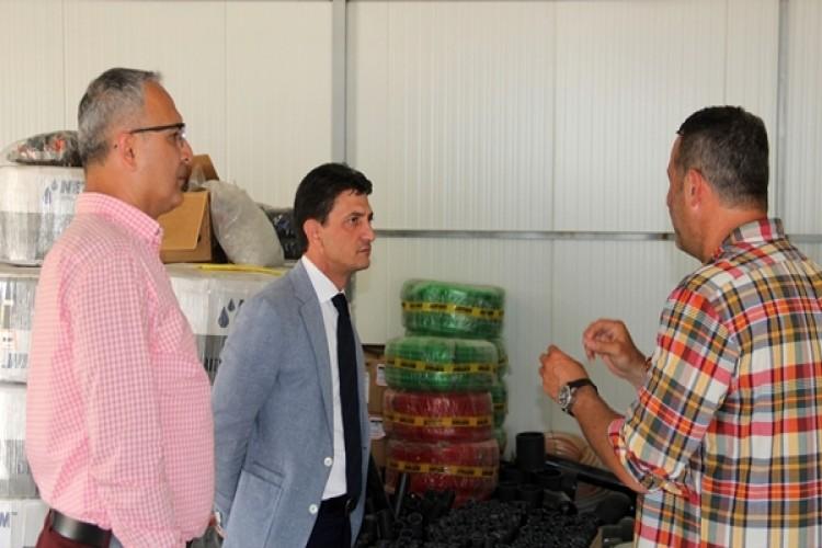 Yalova'da İlk Defa Topraksız Çilek Üretimi Yapılacak