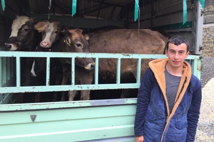 Genç Çiftçiler Damızlık Hayvanlarına Kavuştu