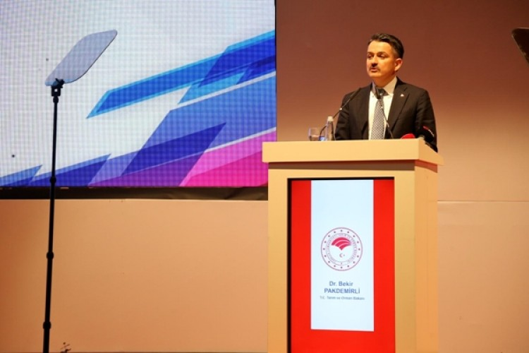 Türkiye Birçok Üründe Dünyada Lider Durumda
