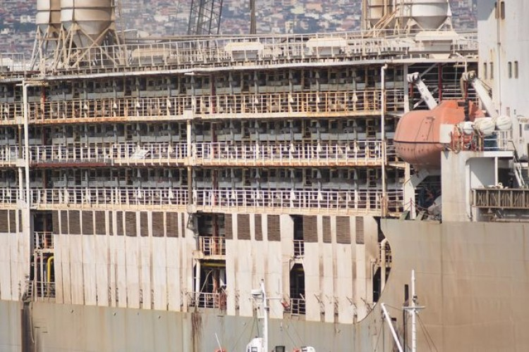 İzmir'e Gemi İle 6 Bin 549 Büyükbaş Hayvan Getirildi