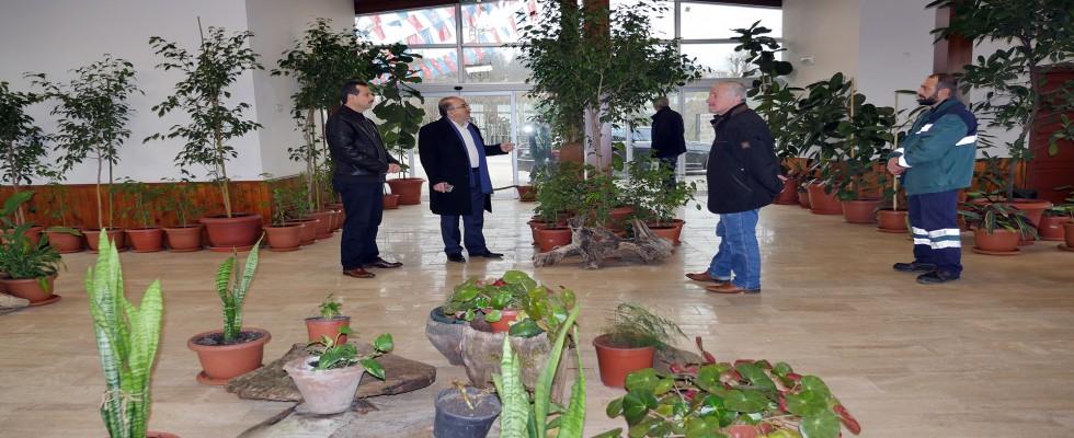 Bitki Kütüphanesi' Tamam, Sırada 'Kök Müzesi' Var