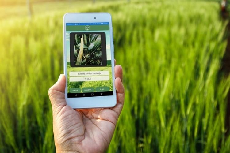 Dünyada Bir İlk: Çiftçi Fotoğraf Çekecek Hastalığı Öğrenecek