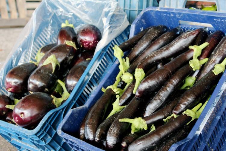 Patlıcanın Fiyatı Yüzde 40 Düştü